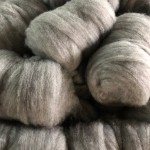 carded-wool